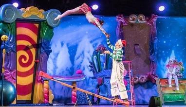 Se busca profesores de acrobacia en telas, circo y ritmos urbanos para escuela de Zona Pilar