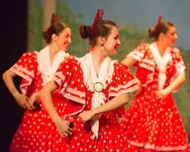 Se buscan hombres y mujeres que bailen flamenco de 20 a 40 años para proyecto remunerado