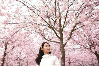 Se requieren actrices orientales para voz en proyecto remunerado