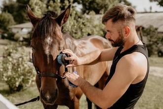 Se necesitan hombres de 30 a 50 años que sepan andar a caballo para proyecto